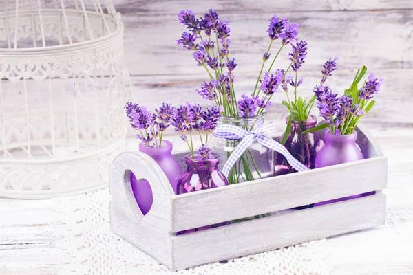 Kết quả hình ảnh cho hương hoa trong phòng